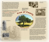 "This poster outlines the cultural and natural heritage of the San people. It explores the cultural and symbolic value of the Shepherd's Bush tree as ""The Tree of Family"". The poster includes photographs of Shepherd's Bush tree as well as San people."