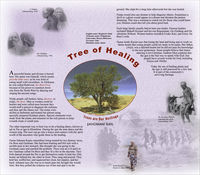 "This poster outlines the cultural and natural heritage of the San people. It explores the cultural and symbolic value of the Shepherd's Bush tree as ""The Tree of Healing"". The Poster includes photographs of Shepherd's Bush tree as well as San people."