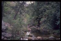 Baviaanskloof stream