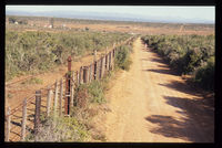 Addo Elephent National Park fenceline