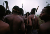 Zulu warriors, South Africa, 1994