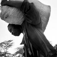 Coffee growers, Zambia