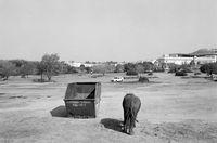Elephant walking past dumpster, Johannesburg, South Africa