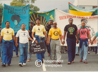 Various party members at a protest, Cape Town