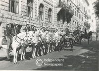 Soldiers on their horses sit at  attention at the opening of Parliament , Cape Town