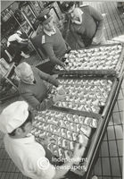Workers prepare food for the prisoners, Cape Town