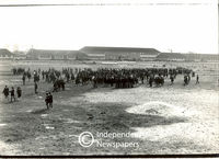 School pupils congregate on a field, Cape Town