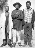 Three boys stare defiantly at the camera, Cape Town
