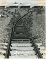 Railway lines leading to Bellville goods depot, Cape Town