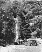 Waterfall on the contour path, Table Mountain, 1951