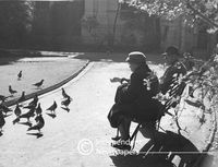 Feeding pigeons in the Company's Gardens, Cape Town, 1960