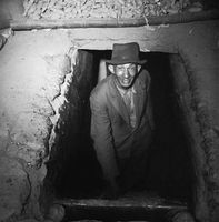 Man standing in an underground potato storage, Genadendal, South Africa