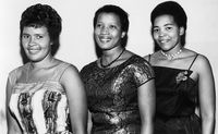 Three women at a formal event, Eastern Cape, South Africa
