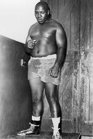Boxer standing on table, Eastern Cape, South Africa