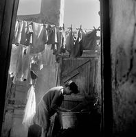 Woman washing clothing in backyard, District Six, Cape Town, South Africa