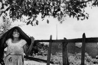 Woman standing at a fence in a garden, Mexico