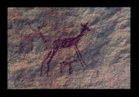 Image from rock painting site. Site of Kanetvlei  3, Hex River Valley, Western Cape, South Africa.