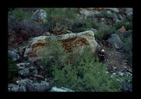 Image from rock painting site. Site of Kanetvlei  4, Hex River Valley, Western Cape, South Africa.