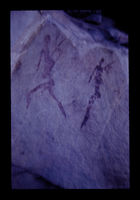 Image from rock painting site. Site of Tweedside  1, South Africa.