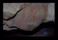 Image from rock painting site. Site of Suikerdrifkloof, Ladismith, South Africa.