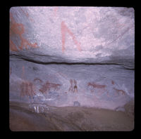 Image from rock painting site. Site of Pienaarskloof 9I, Touwsrivier, South Africa.