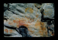 Image from rock painting site. Site of Ezeljgts poort 1, George, South Africa.