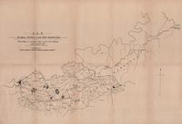 C.G.R. Aliwal North-Lady Grey inspection : sketch map to accompany report by John Gillespie, dated May 20th 1898