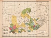 Cape Colony, 1896 : map showing lepers per 10,000 of population for last 10 years so far as can be ascertained, 8th February, 1896