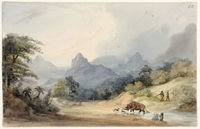 Rhinoceros at Bay - Mountain Scenery. Matselikats country