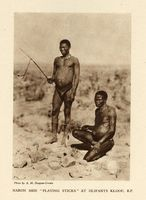 "Naron men ""playing sticks"" at Olifants Kloof, B.P."