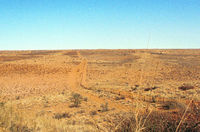 Xausendi pan within the Kgalagadi Transfrontier Park