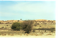 Red dunes marking the open national boundary between South Africa and Botswana