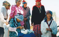 San community elders assist with the data collection for the Land Claims process