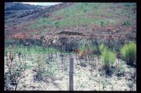Kasteelkloof catchment