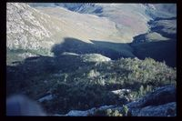 Swellendam State Forest