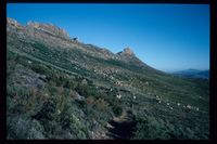 West slopes of Tafelberg