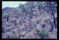 Algeria Nature Reserve