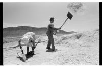 Winnowing wheat, Namaqualand