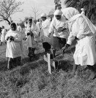 Placing flowers on the graves of the church forebears