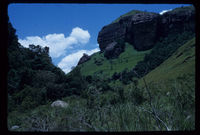 Cathedral Peak. Ndedema