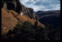 Ndedema - Mhlwageni River. Cathedral Peak. William, v.d. Riet