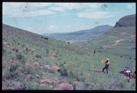 133/81. Looking west [Upper Tugela Location: slopes opposite Zinyonyana][227]