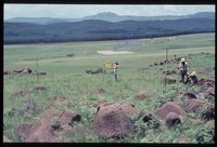 96/81. Looking south west [Farm Highveld][190]. Grid Square may be 2829DC