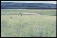 97/81. Looking south east [Farm Highveld - just north of dam at El Mirador air strip][191]