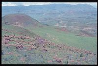 Looking west along the ridge of Nyongana from 134/81 [north east Summit of Ngonyama Mountain above Emmaus][228]