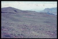 Cathedral Peak-Upper Tugela Location. Plateau above Hopeton looking east