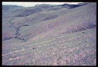 Upper Tugela Location. Immediately north east of Cathedral Peak Ridge west facing slopes