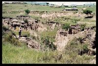 Gully erosion vicinity 142/81. Drakensberg No 2 location, looking south south west. Grid Square reflects best estimate from available information, but accuracy questionable