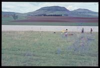83/81 [The Delta - just above north west of Mlambonja]
