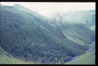 South east slopes of Magangozi Valley. After effects of fire of August 1981. Maganyozi. Mlambonja